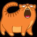3 cat_sing