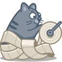 5 cat_paper